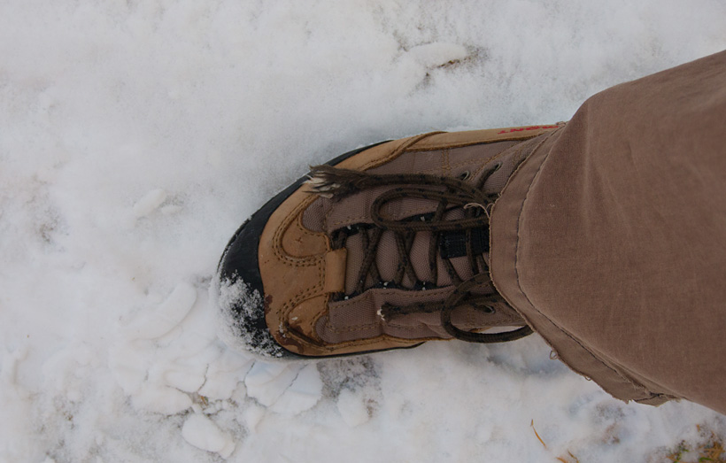 First step on a long winter's walk - Photo by Trent P. McDonald