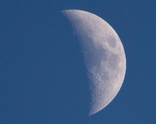 Mad May Moon