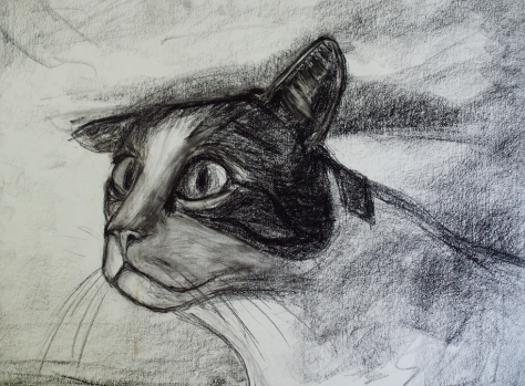 Bartelby - Charcoal