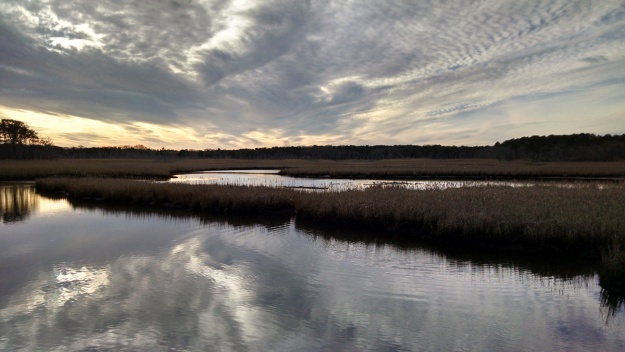 Winter sky over salt marsh