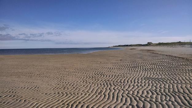 cChapin Beach (phone)