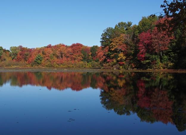 Pond, Milford, MA