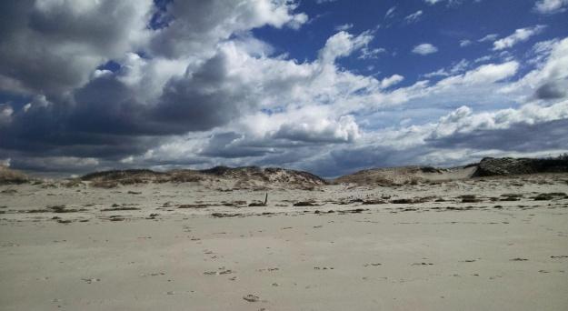 Chapin Beach