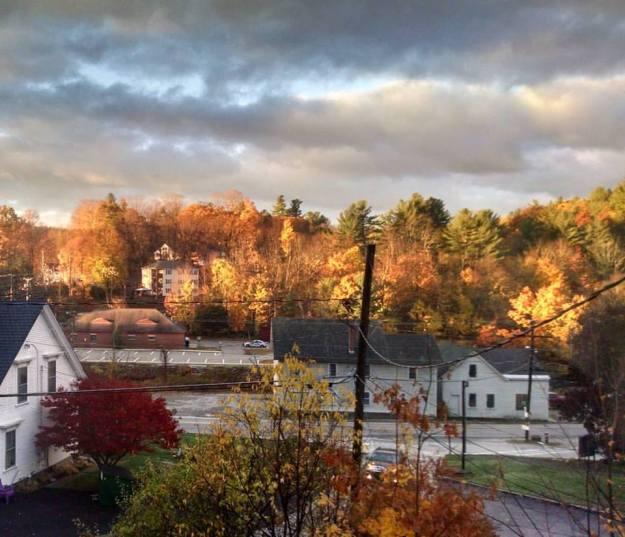 window-november-4