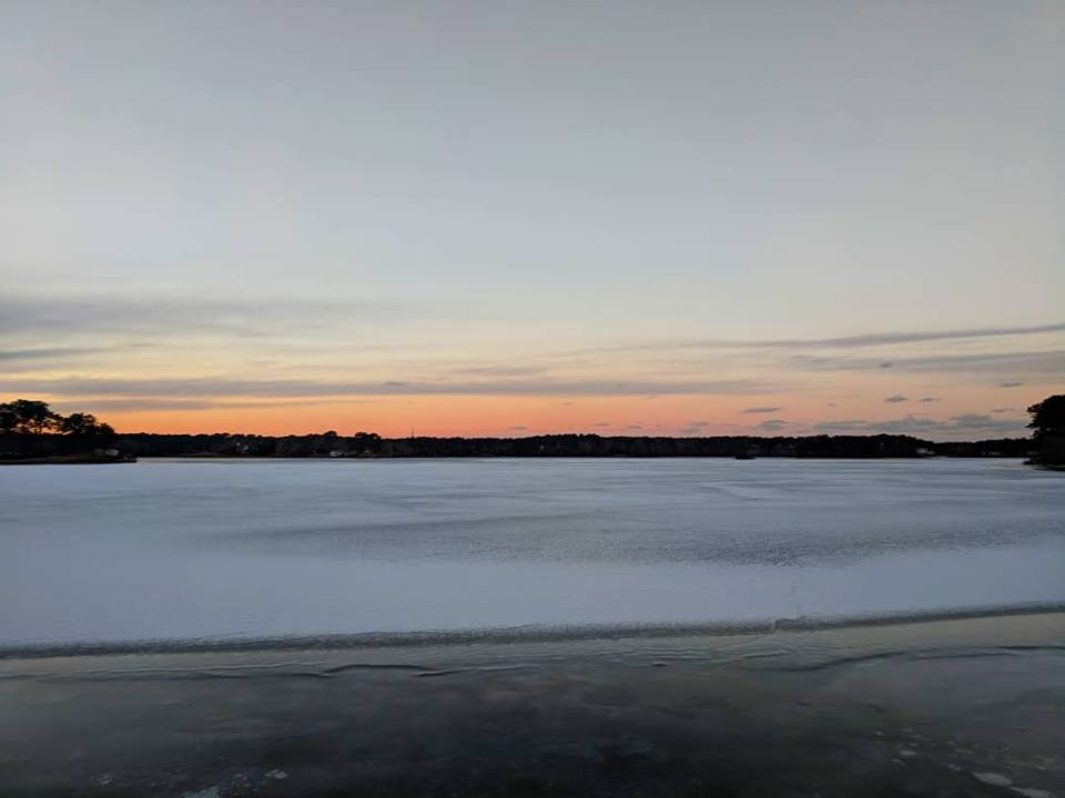 frozen-swan-pond