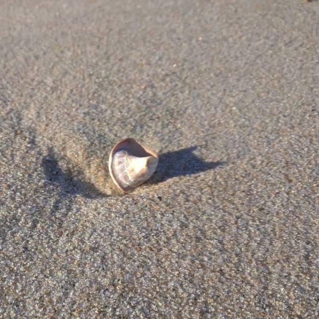 december-sand
