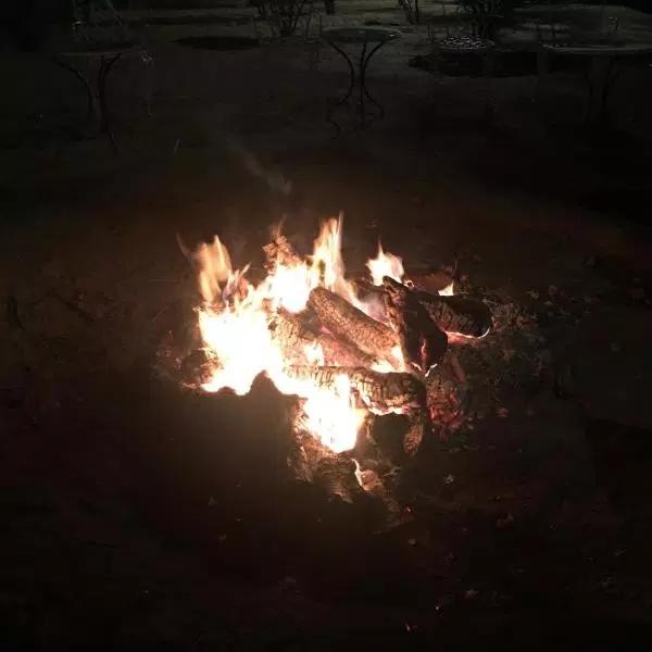 bonfire-anshu