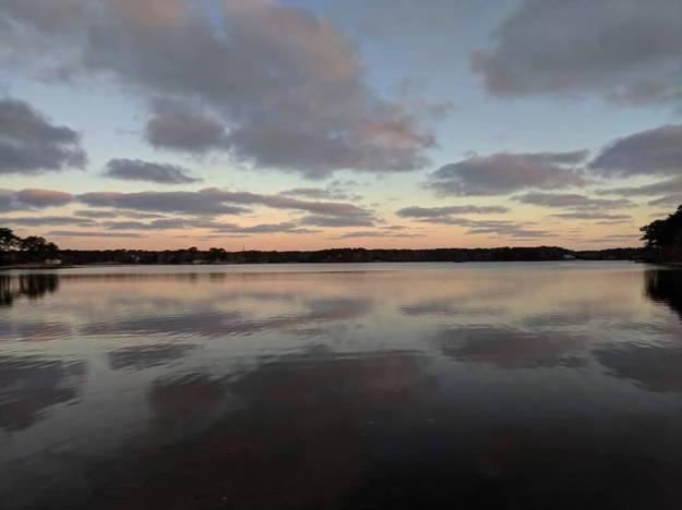 swan-pond-3-28-2019-6_30_am