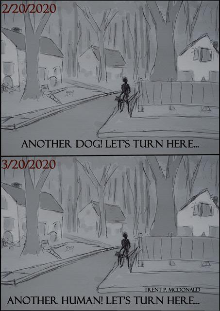 Dog-walk-2020